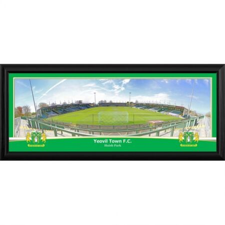 A great framed photographic print of the stadium. Framed in black and supplied ready to hang. Overall size 822x348mm